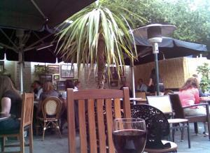 Princess of Wales Pub Blackheath Back Garden