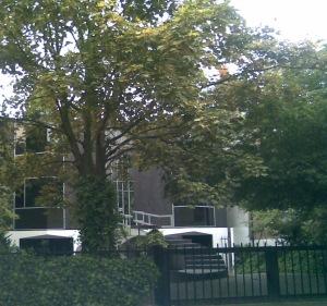 10 Blackheath Park