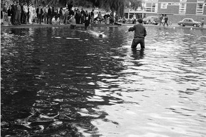 Model boats on the pond in Blackheath in the 1960s