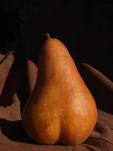 Pear by Flickr user Vanessa Pike Russell