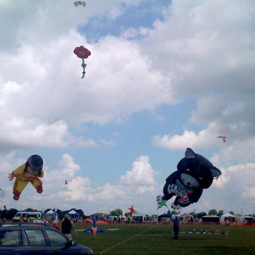 cat-kite