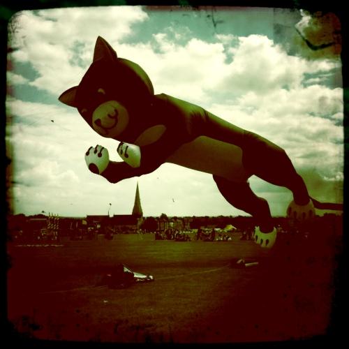 Blackheath Bike and Kite Festival