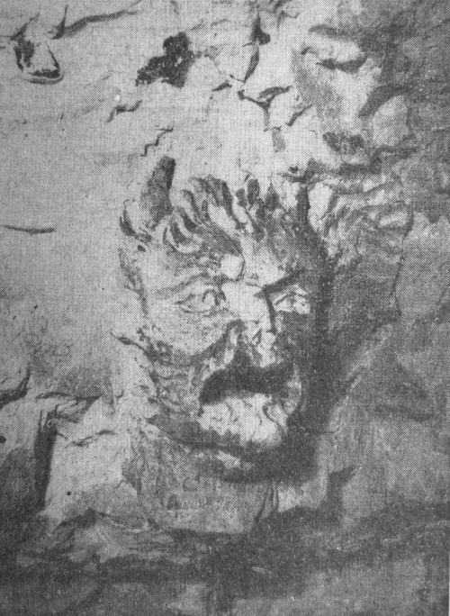 Demon carving in Blackheath Cavern
