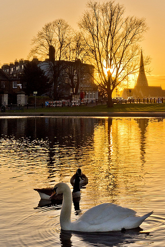 Blackheath Sunset