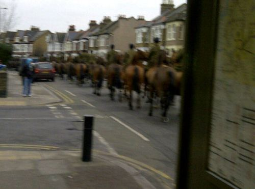 Horses on Charlton Road