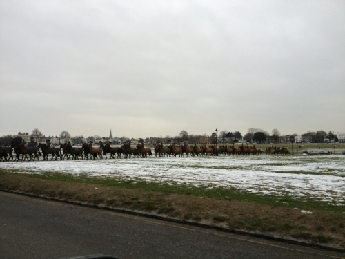 100 horses on Blackheath