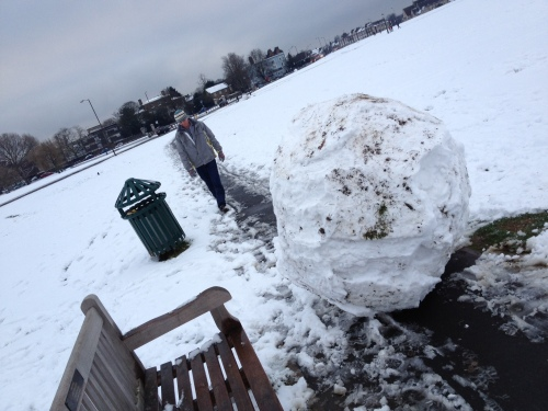 Antisocial snowball by David Boyle