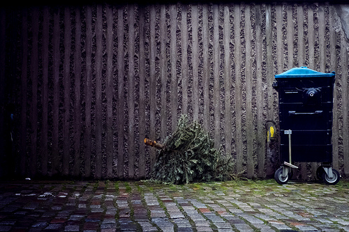 Christmas Tree Recycling Greenwich : January the blackheath bugle